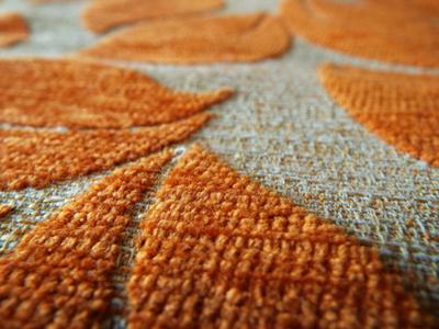 staincarpet (1)